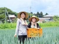 茨城県でIターン就農 目指すのは「女性だけで働く農園」