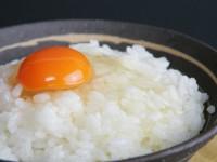 main_okukuji